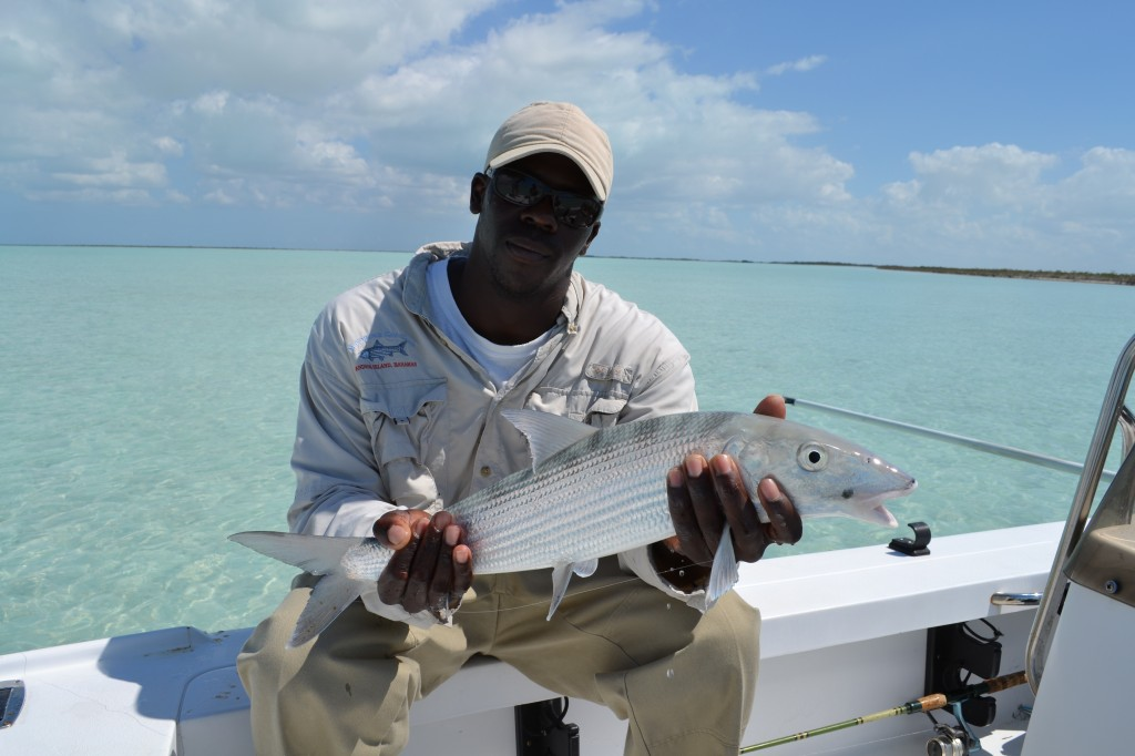 Big bonefish, Andros Island